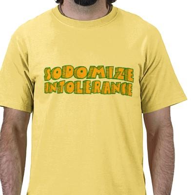 sodomize_intolerance_t_shirt-p235326057192443411qdso_400